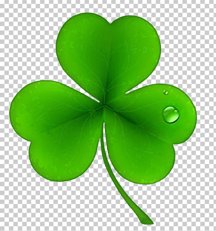 Ireland Shamrock Saint Patrick's Day Irish People PNG, Clipart.