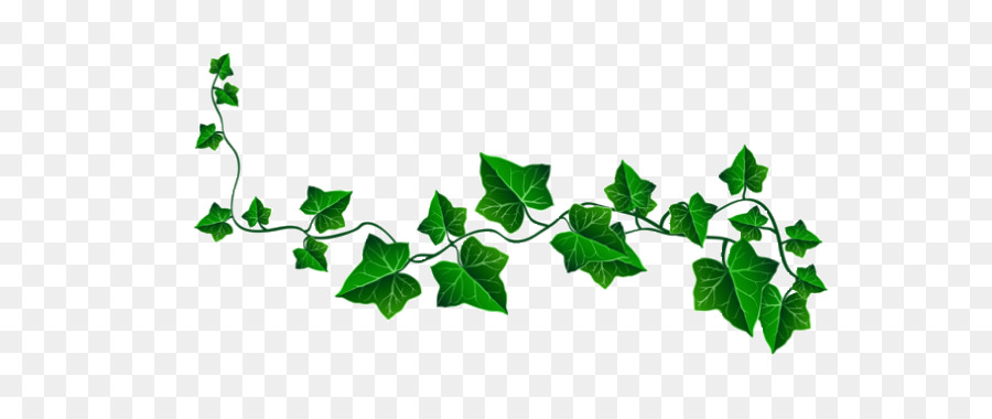 Ivy Leaf Vector at GetDrawings.com.