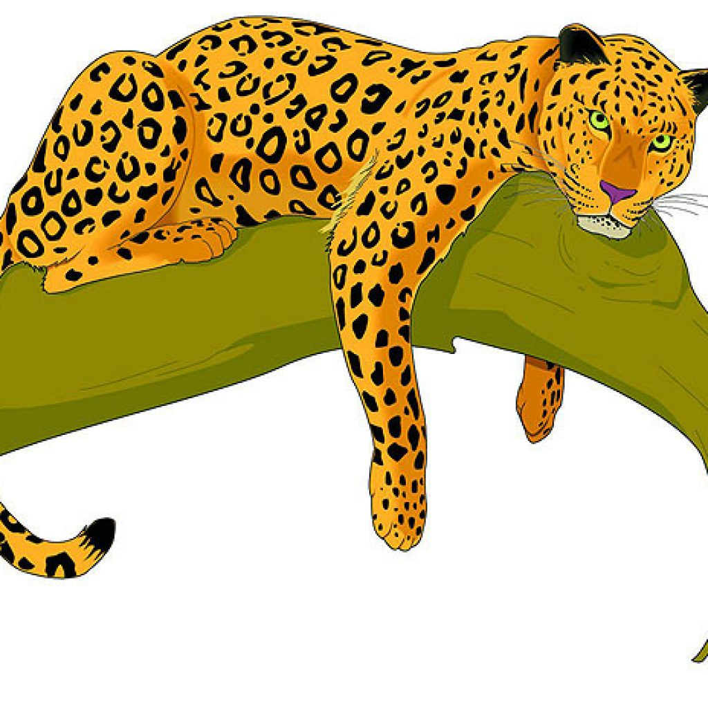 Library of jaguar graphic transparent library pictures png.