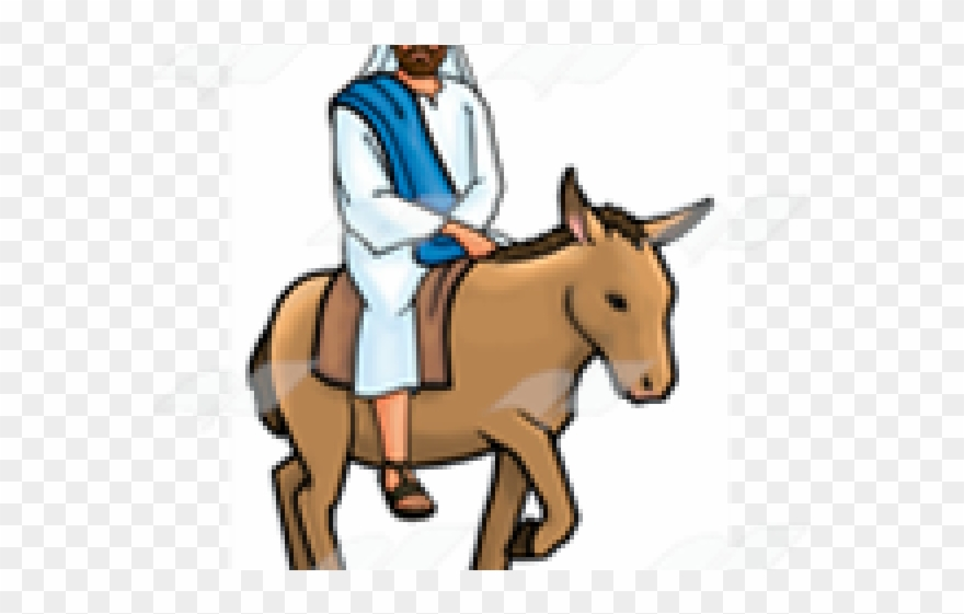 Mule clipart donkey ride Transparent pictures on F.