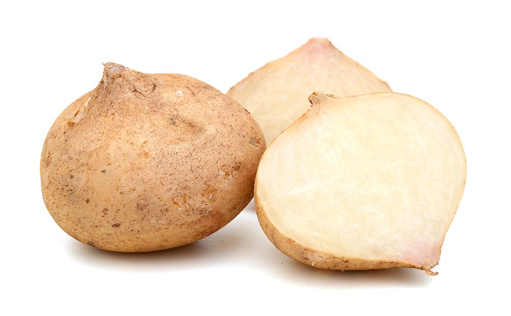 Jicama Root.