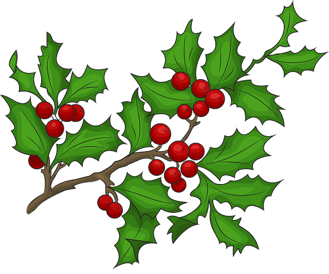 Christmas Clipart. Free Download in .PNG or Vector format.