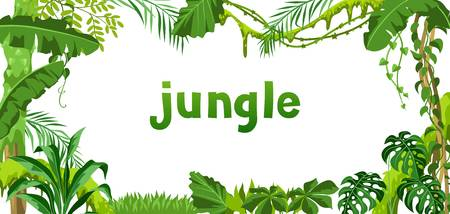2,704 Jungle Vines Stock Vector Illustration And Royalty Free Jungle.