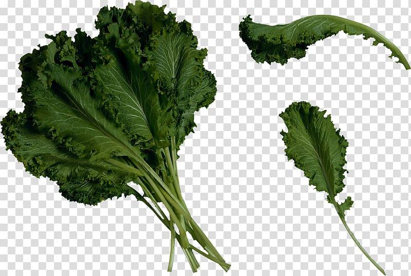 Green leafed vegetables, Juice Lettuce Salad Kale, Salad.