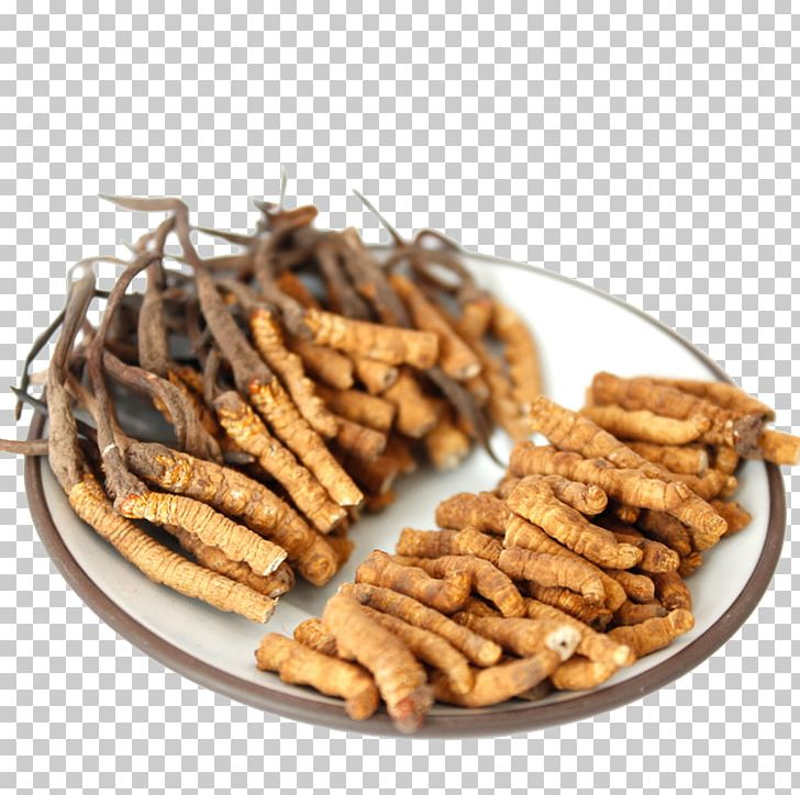Nagqu Caterpillar Fungus Gram Cordyceps Kan PNG, Clipart.
