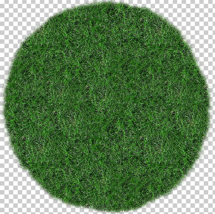 Grass Lawn Mowers Meadow PNG, Clipart, Bluegrass, Corporate.