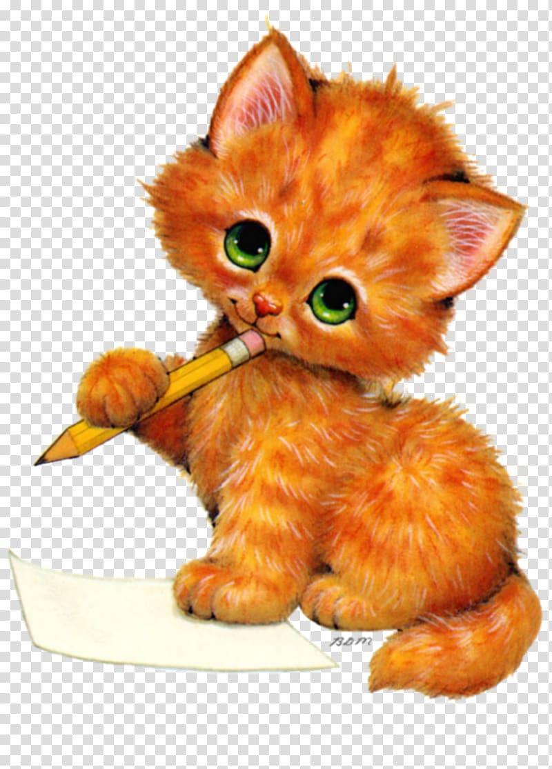 Kittens and Kittens Cat , kitten transparent background PNG.