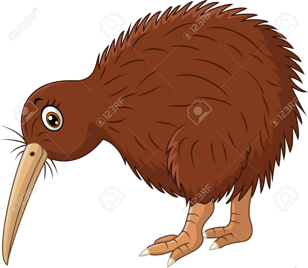 Kiwi Clipart Bird.