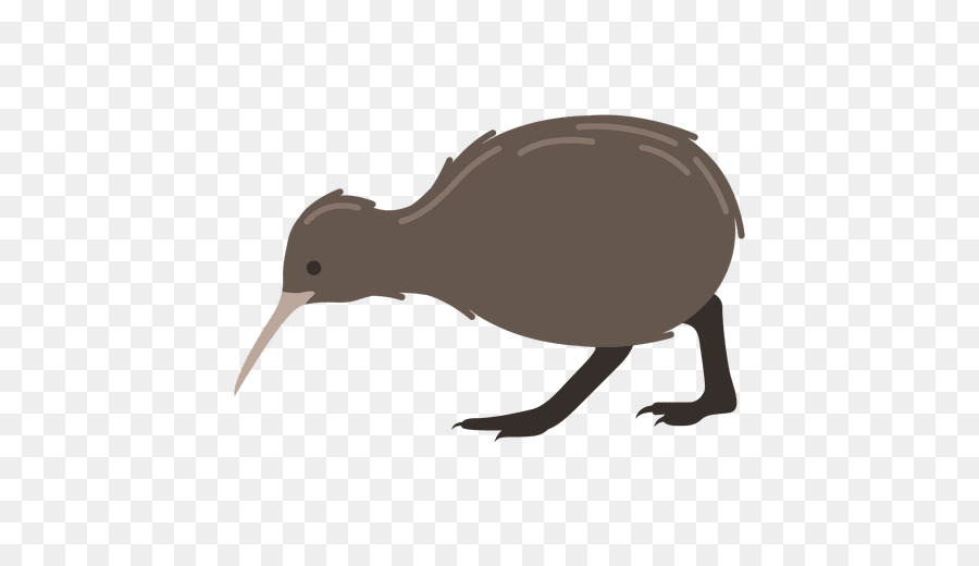 Kiwi Bird Clipart png download.