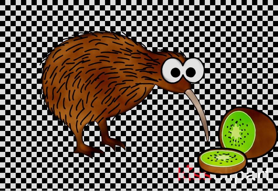 Kiwi Bird Clipart clipart.