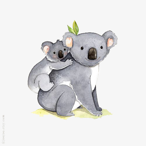 Hand Painted Koala, Koala Clipart, Cartoon Koala, Koala Illustration.