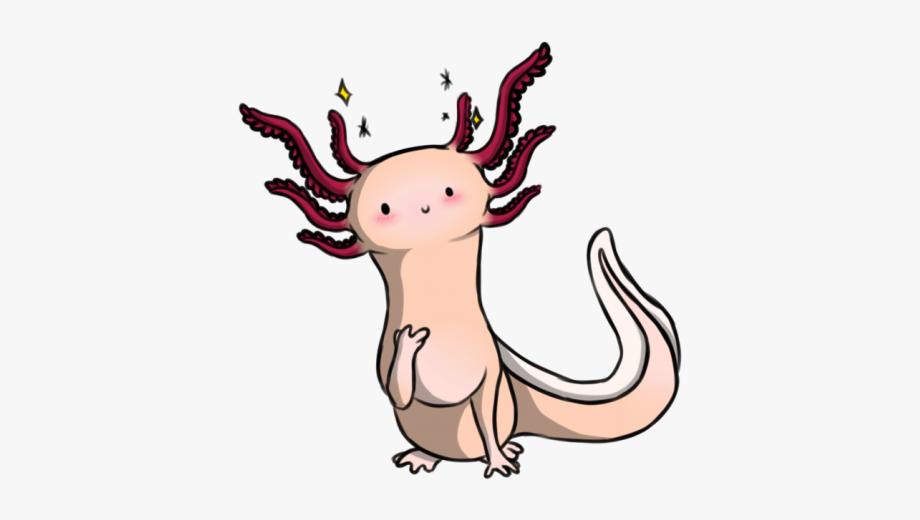 Axolotl Clipart Cute Cartoon.