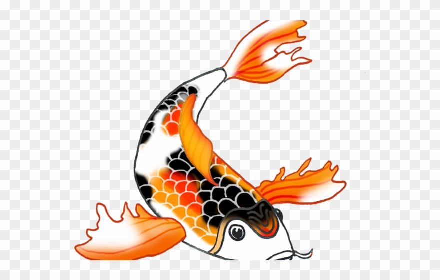 Koi Fish Clipart Draw In Color.
