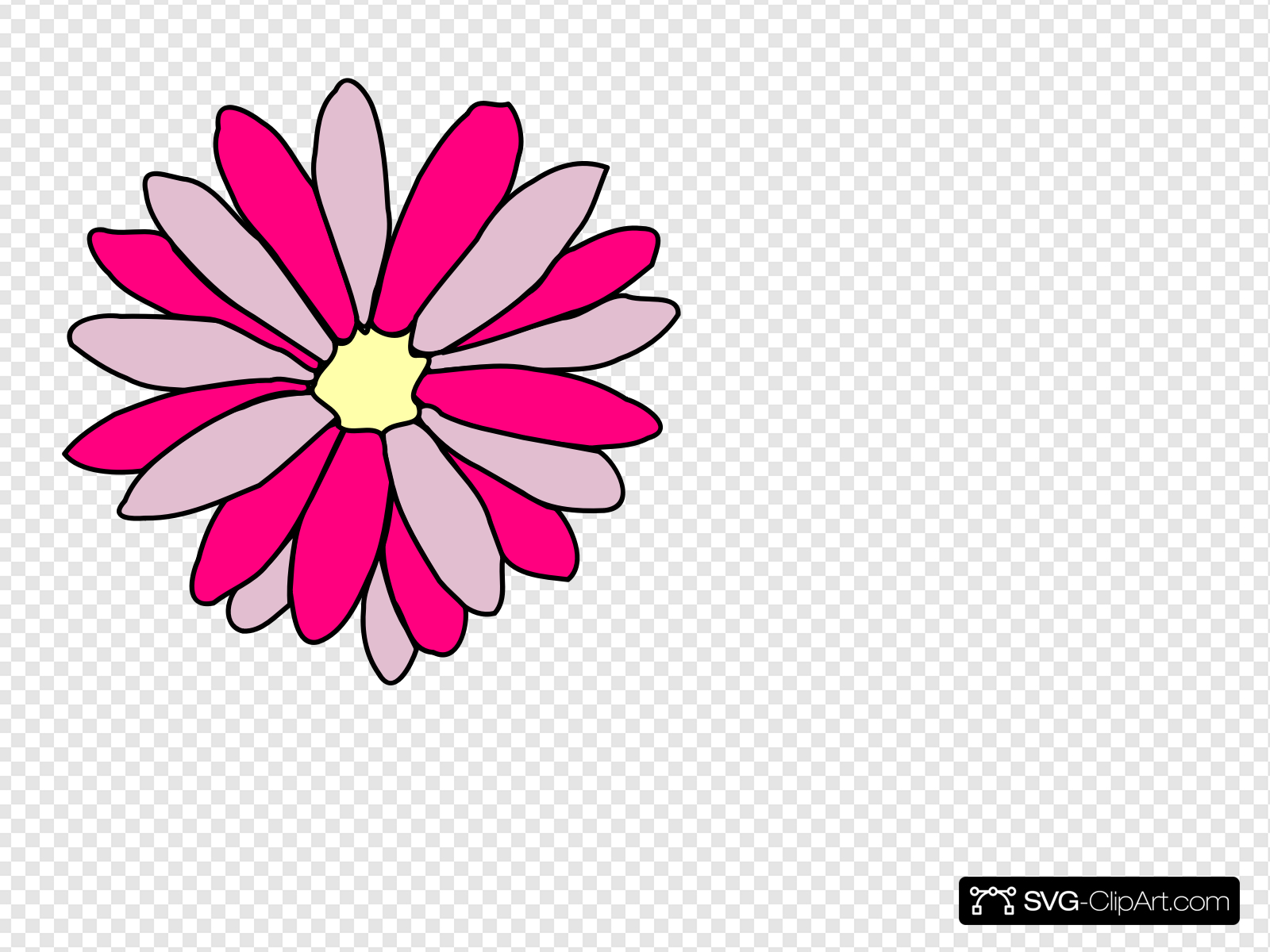 Pink Daisy Flower Clip art, Icon and SVG.