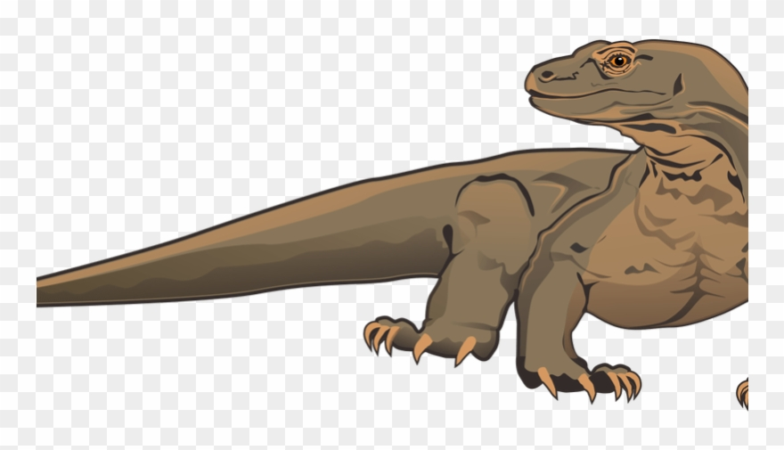 Komodo Dragon Clipart White Background.