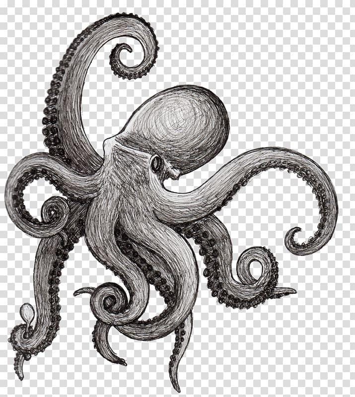 Octopus Drawing Squid Kraken Cephalopod, aquatic transparent.