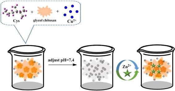 A Copper Nanocluster Incorporated Nanogel: Confinement.