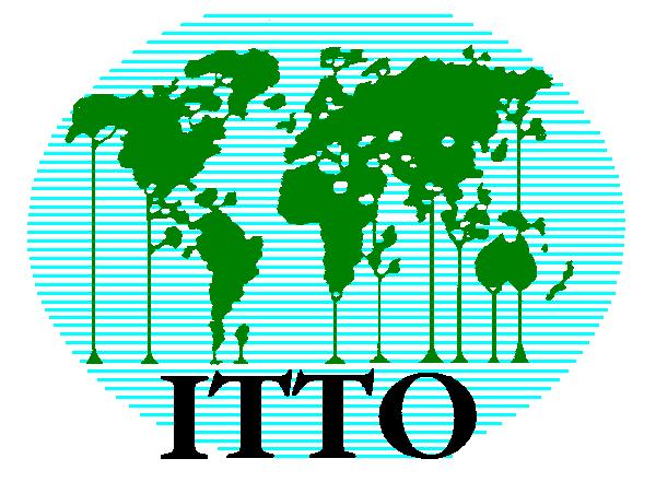 Tropical Timber Market Report.