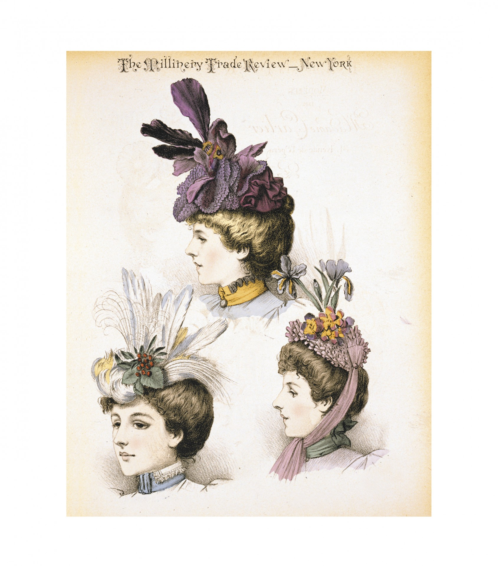 Vintage Women Hats Art Free Stock Photo.