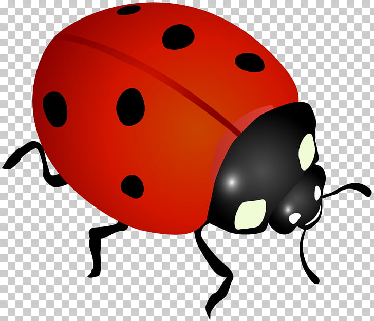 Ladybird Desktop , leaves and ladybugs PNG clipart.