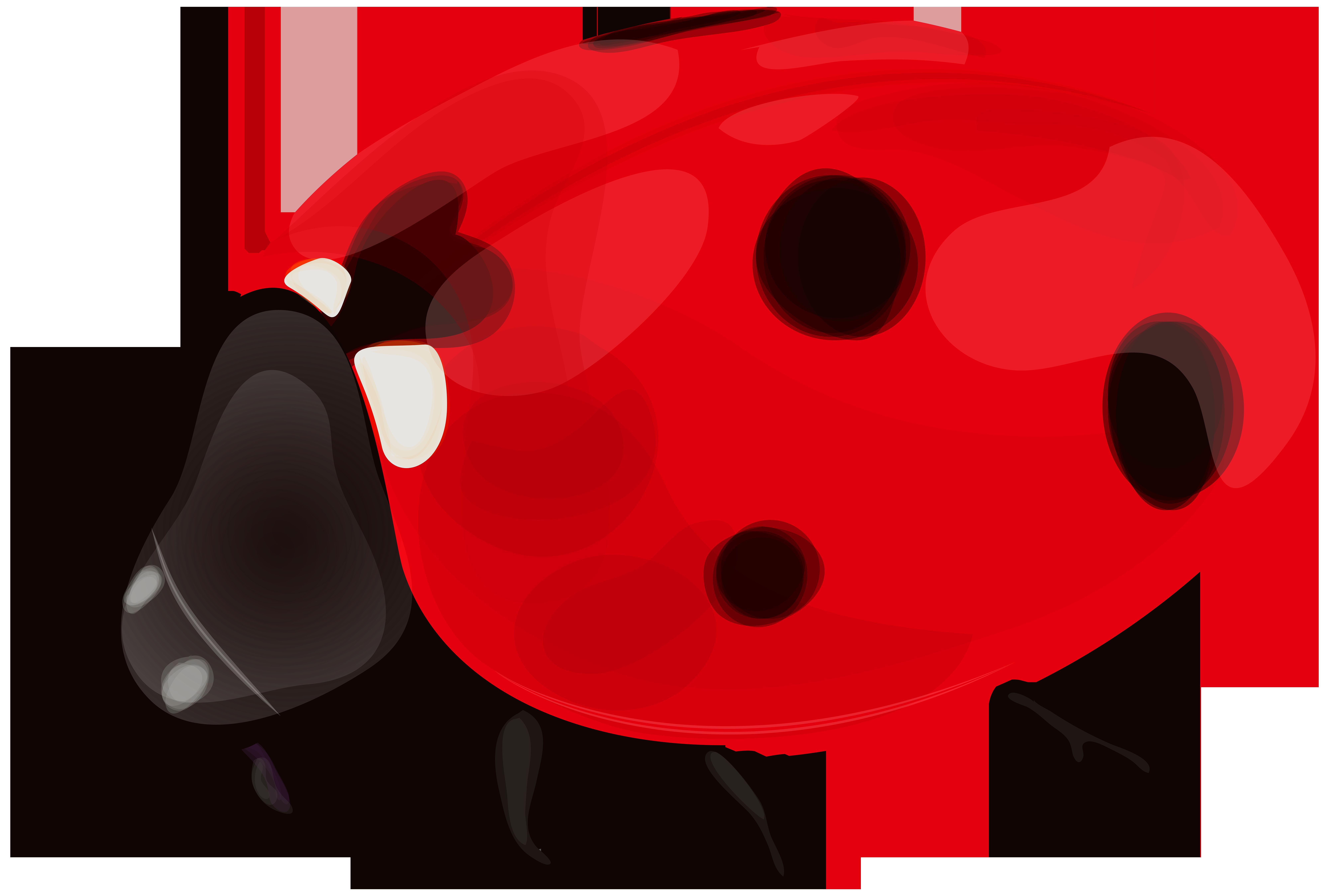 Ladybug PNG Clip Art.