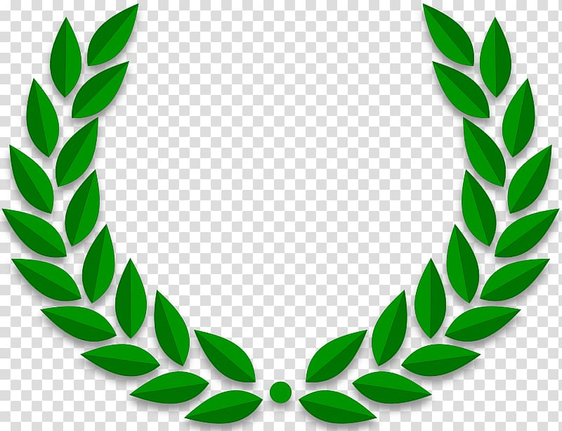 Green leaves illustration, Laurel wreath Bay Laurel Olive wreath.