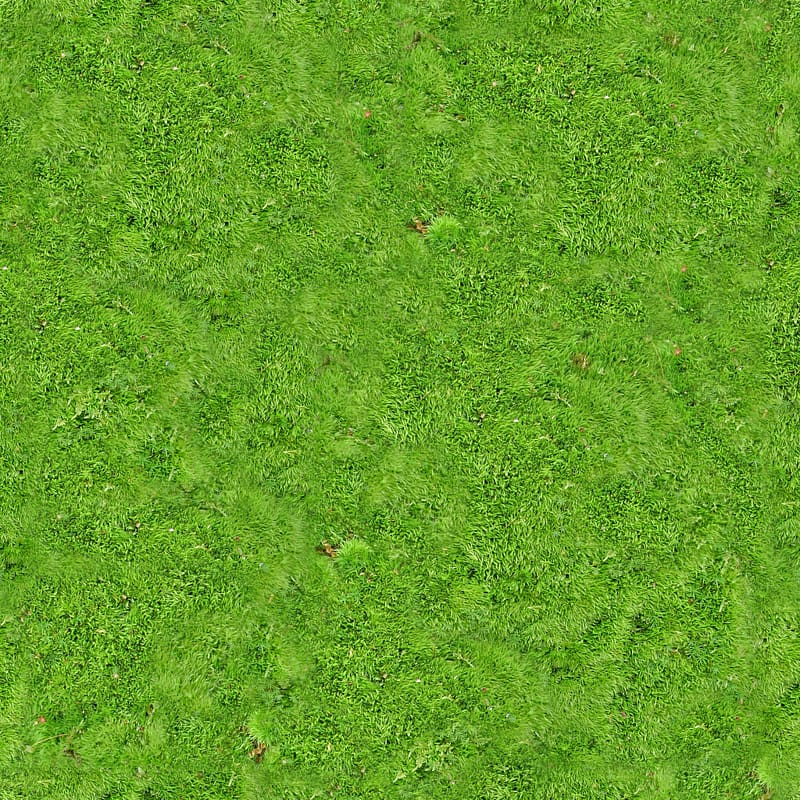 Green grass field, Vegetation Lawn Grassland Green, Carpet.