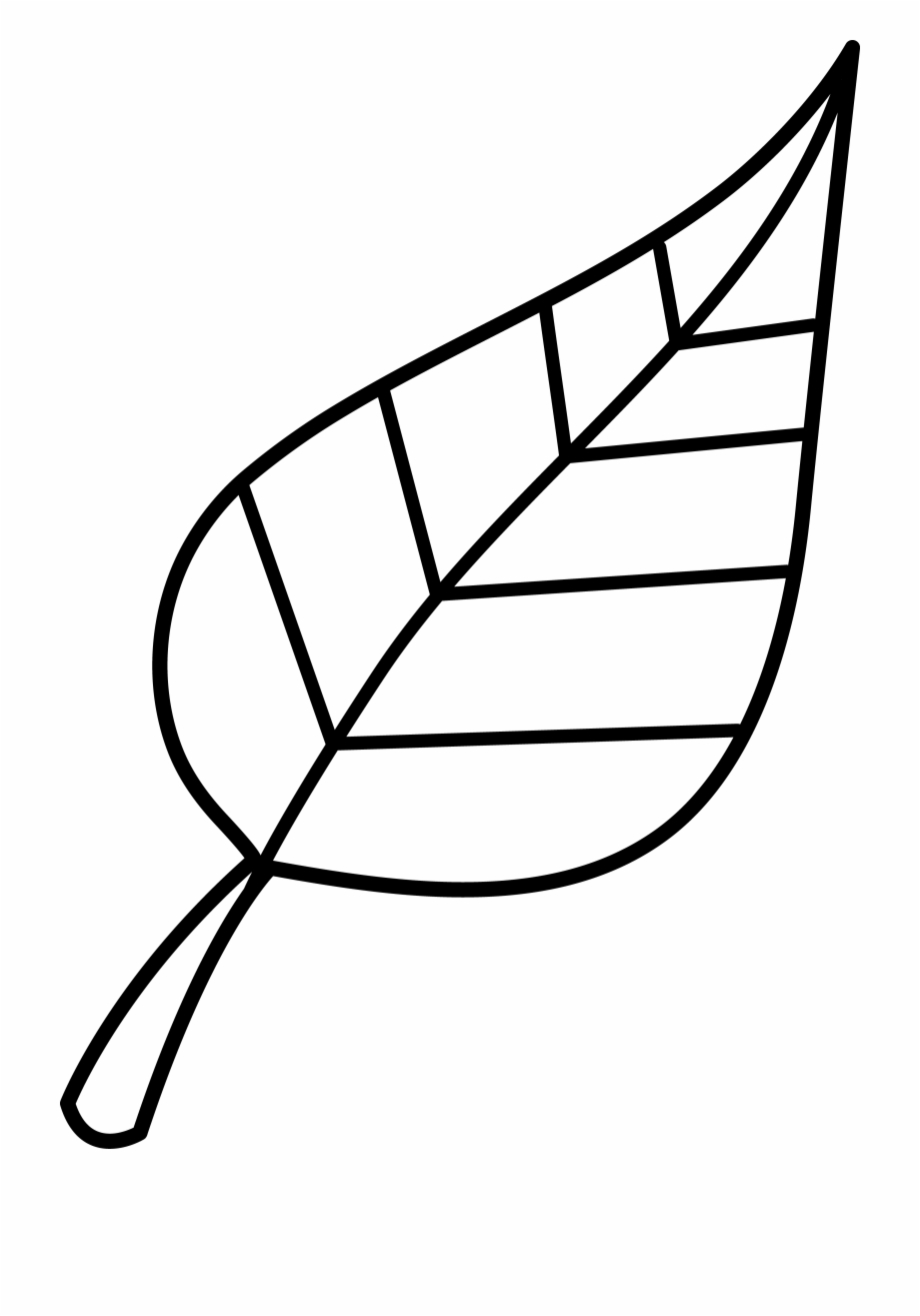 Free Leaf Black And White Clipart, Download Free Clip Art.