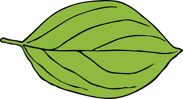 clipart leaf shapes #19