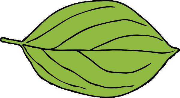 Oval Leaf Clip Art at Clker.com.
