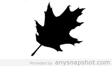Vector oak leaf silhouette clip art.