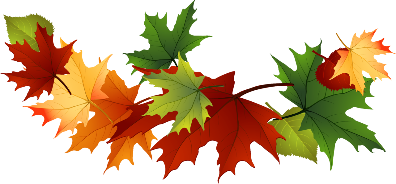 Fall Leaves Clip Art Free Fall Transparent Leaves.