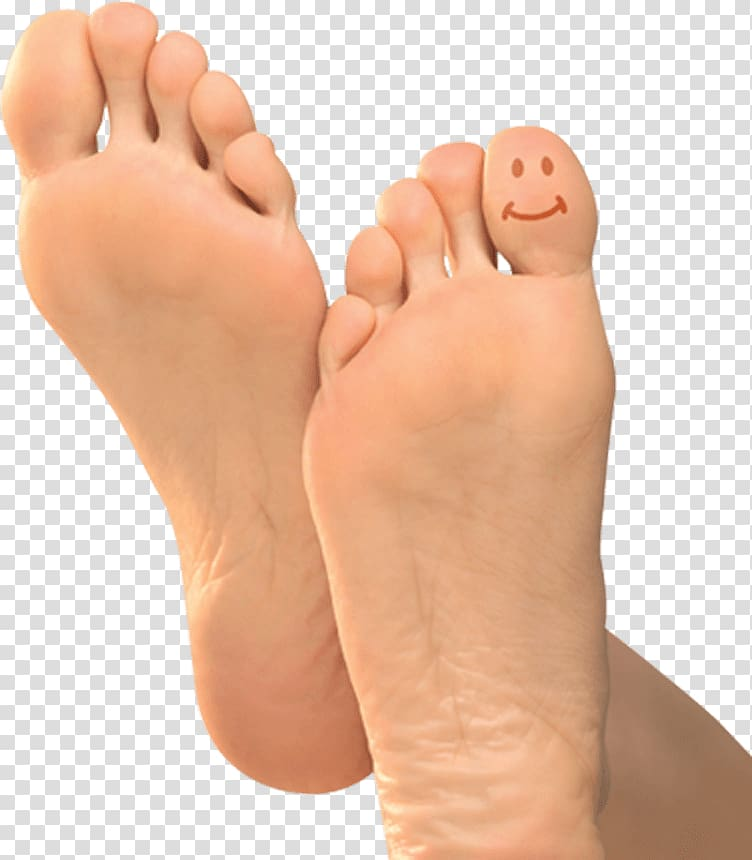 Foot Leg Toe, Foot transparent background PNG clipart.