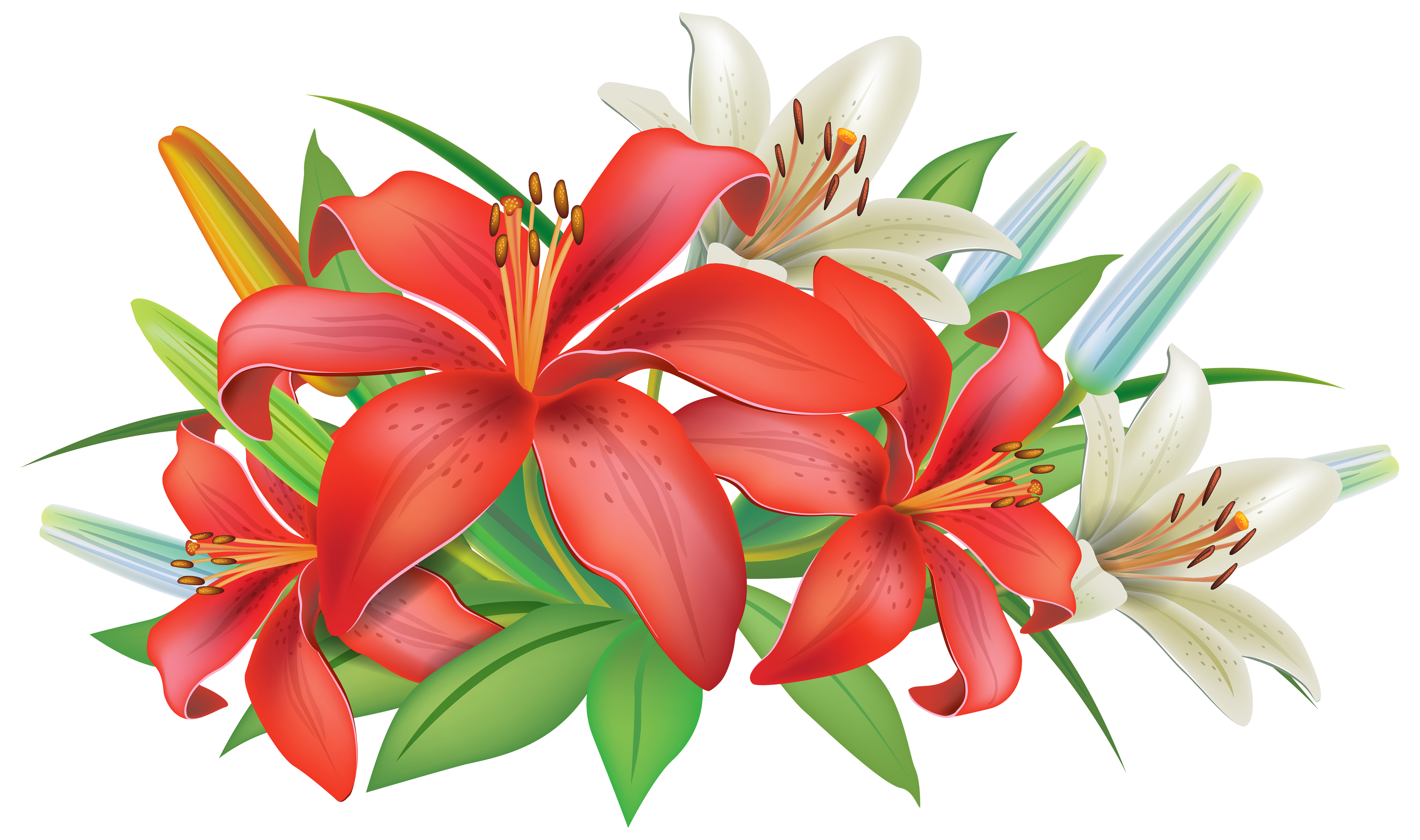 Red Lilies Flowers Decoration PNG Clipart Image.