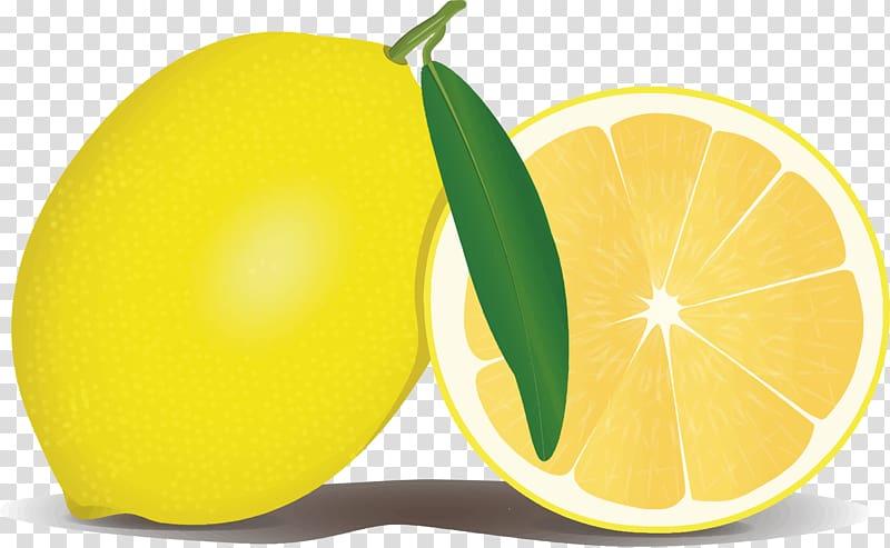 Lemon Health Symptom Vitamin C Disease, Lemon File.