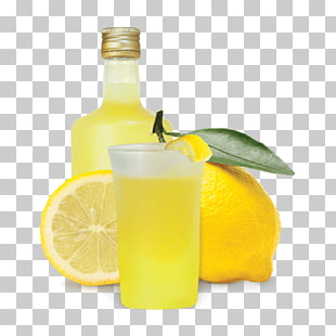 53 limoncello PNG cliparts for free download.