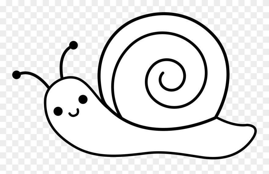 Cute Snail Lineart.