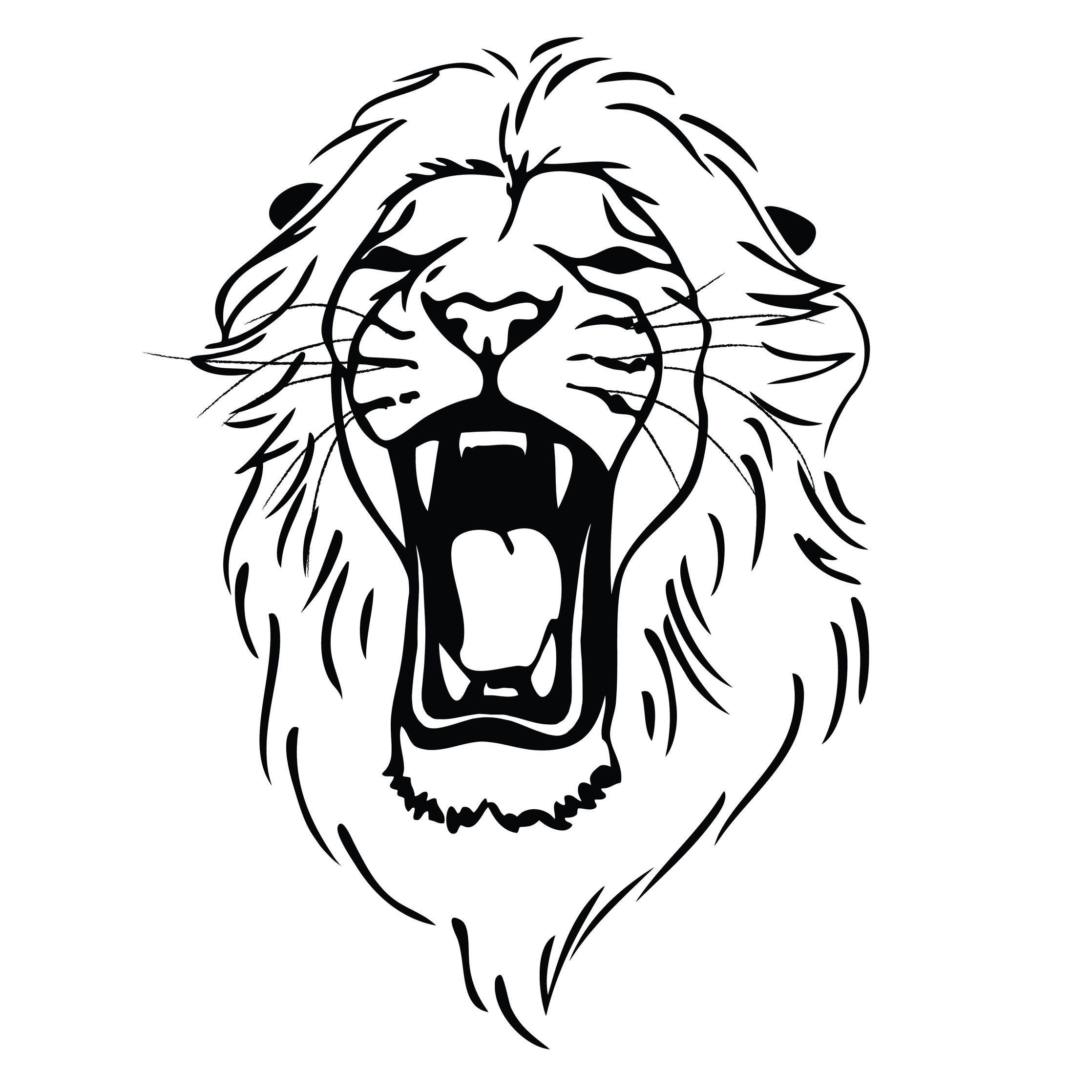 Lion Roaring Drawing.