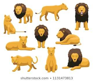 Lioness clipart 5 » Clipart Portal.