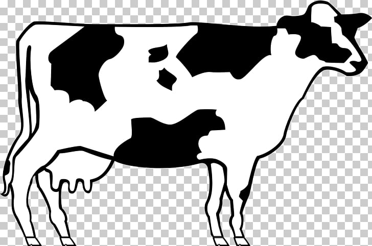 Ayrshire cattle Beef cattle Shorthorn , cow PNG clipart.