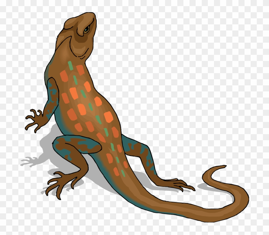 Clip Art Royalty Free Download Chameleon Clipart Reptile.