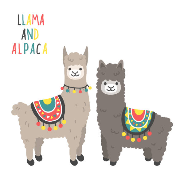 Clipart llama 5 » Clipart Station.