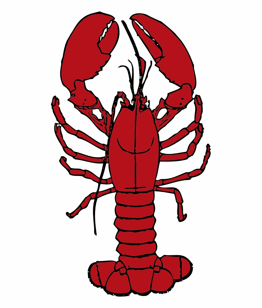 Lobster Clipart Sebastian.