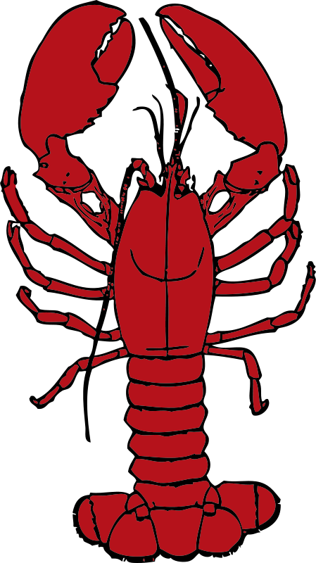 Free Clipart: Lobster.