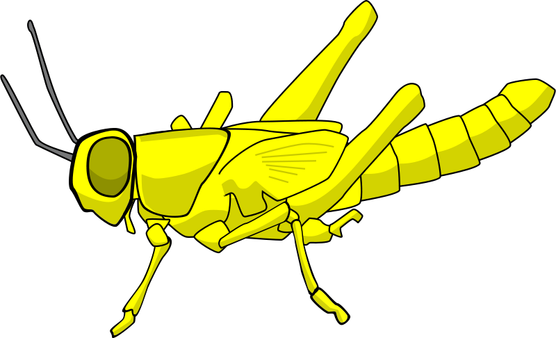 Free Clipart: Locust.