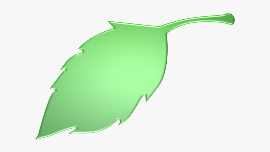 Green Leaves Clipart Long Leaf.