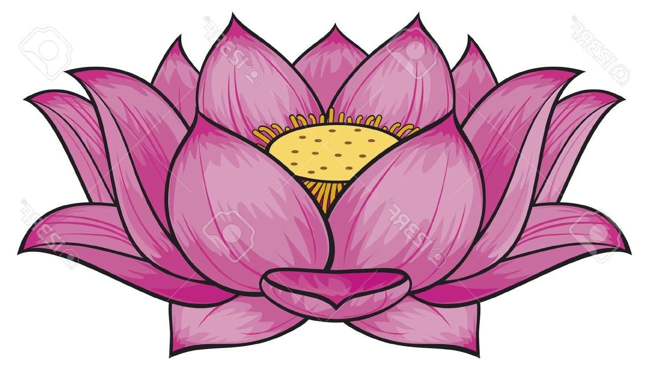 Lotus clipart Lovely Lotus clipart lotus flower Pencil and.