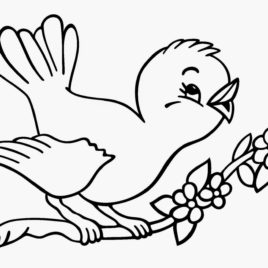 Twitter Little Birds Coloring Pages Birds Coloring Pages Ikids.