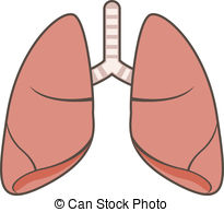Lungs clipart, Lungs Transparent FREE for download on.