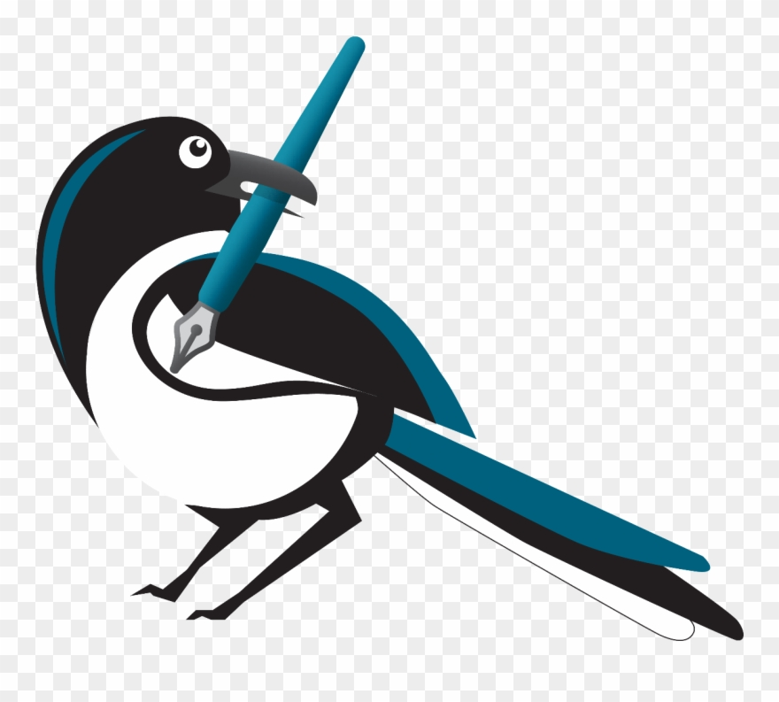 Magpie Clipart Transparent.